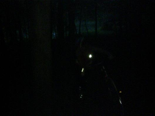 It was fucking dark in the woods. I hope this picture does it justice. If not, then open Paint, grab the bucket tool, select black, and then perhaps you'll get a good represenation.
