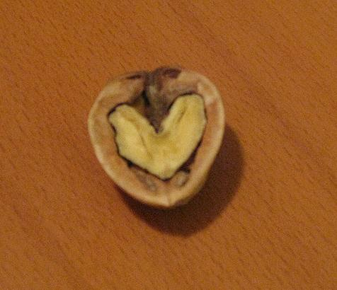 A walnut that revealed a heart to me at the ugly sweater party. I kept it uneaten, as it seemed kind of weird to eat my nut heart.