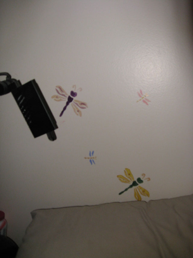 Technicolour dragon flies watching me sleep